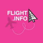 Flight Info logo design