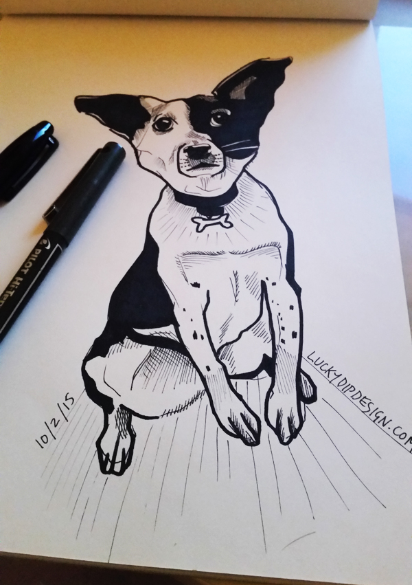Black and white drawing of a Border Collie pup called Charles.