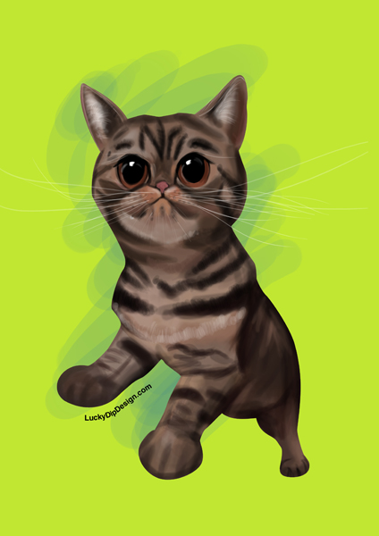 An illustration of Shirley the cat with big wide eyes. On a bright green background.